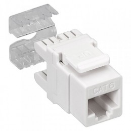 Toma informatica RJ-45 AMP categoria 6 UTP