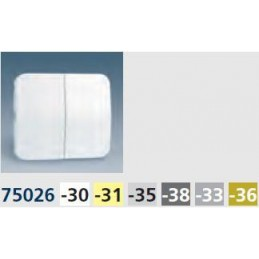 Tecla grupo 2 interruptores conmutadores pulsadores gris Serie 75 Simon 75026-35
